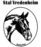 Stal-Vredenheim_150